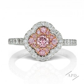 Argyle Pink Diamond | Azalea Halo Ring
